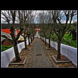 Constancia - Portugal ... 01