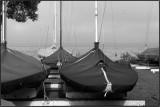 Sleeping Boats in Clearing Fog