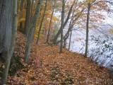 Green Hills Lake, PA 2