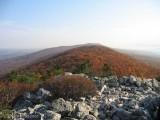 Hawk Mountain, PA 2