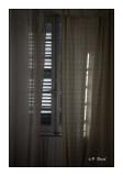 Fenêtre - 5277