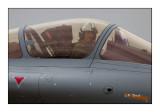 Pilote Rafale - 5020