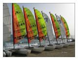 0359 - Les catamarans