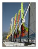 0362 - Les catamarans