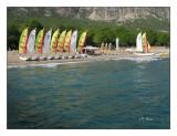 0369 - Les catamarans