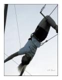 0418 - Jessica au trapèze