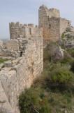 Snake Castle 08032008 2659.jpg