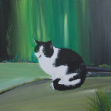 Figaroe the cat