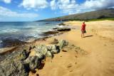 beach scene maui