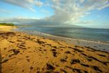 beach scene maui 2