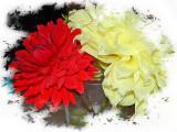 Large Un-Known Flower