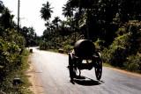 Water Wagon, Sri Lanka