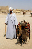 Camel for Hire, Giza