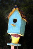 Those Colorful Bird Houses