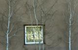 Plaza Window