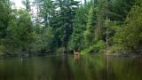 IMG, North Woods, 14.jpg