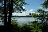 IMG, North Woods, 18.jpg