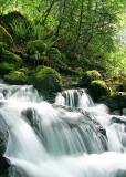 Mossy Rocks, Falls