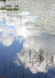 Lake Series 1