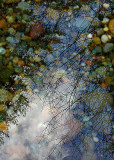Reflections and River Pebbles