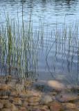 Trails End Lake