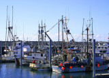 La Push Fishing Fleet
