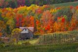 Ridge Road Barn in Fall