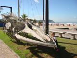 Aquario do Guaruja