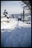0080.Street near our house, good sled riding street w/ this much snow!
