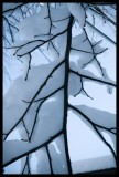snowstorm_feb_2010