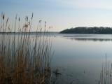 Lagoon Pond.jpg