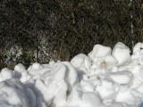 Snow Sculptures.jpg
