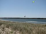 kite boarder.jpg