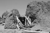 Oregon Coast beach lean-to in rock.jpg