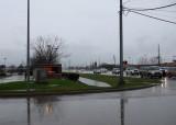 Texas Size Rain Gauge