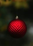Christmas Circle #1