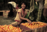 Packing tomatoes at Inle Lake