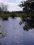 Quiet moor lake