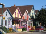 The Homes Of Buffalo