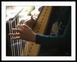 Irish Music - The Harpist