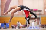women's gymnastics - Stanford vs. Arizona