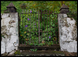 The gate to vegetation