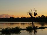 Kruger Parks Views , Camps. Etc.