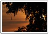 Brazos Bend Sunrise