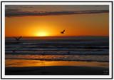 Quintana Sunrise