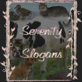 Serenity Slogans