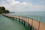 Coastal Boardwalk