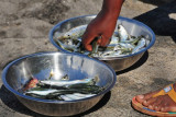 15 Buying the fish 1623