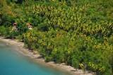 15 Beach, palms on Douglas Bay 2080