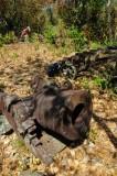 15 Mortar - Douglas Bay Battery 2113